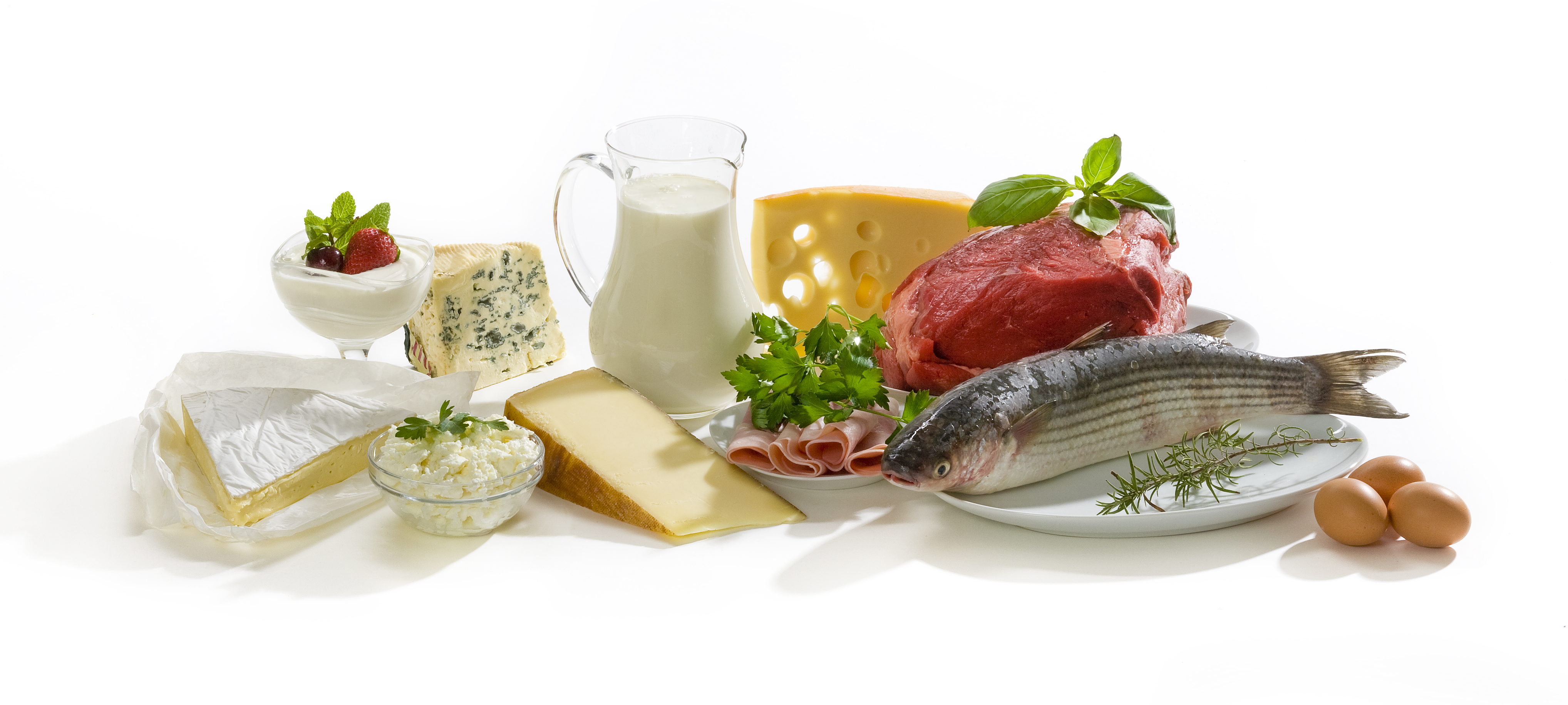 High-Protein Foods and the Grams of Protein in Each