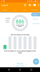 2. Net Calories on My Day